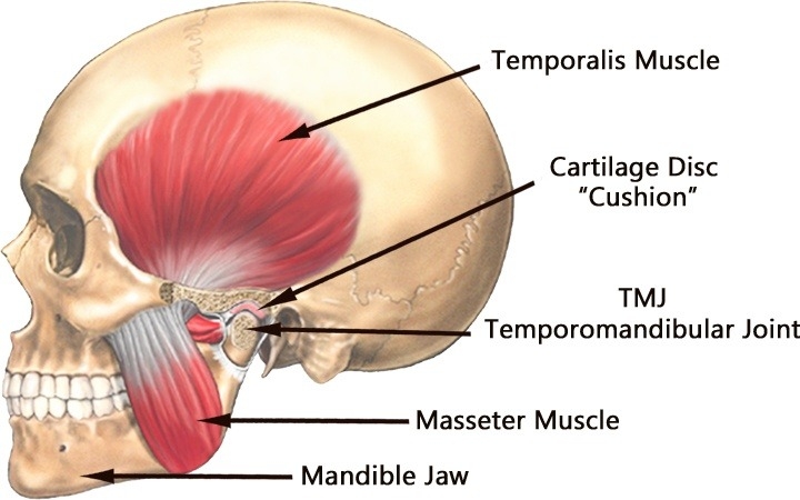 tmj-joint-assessment